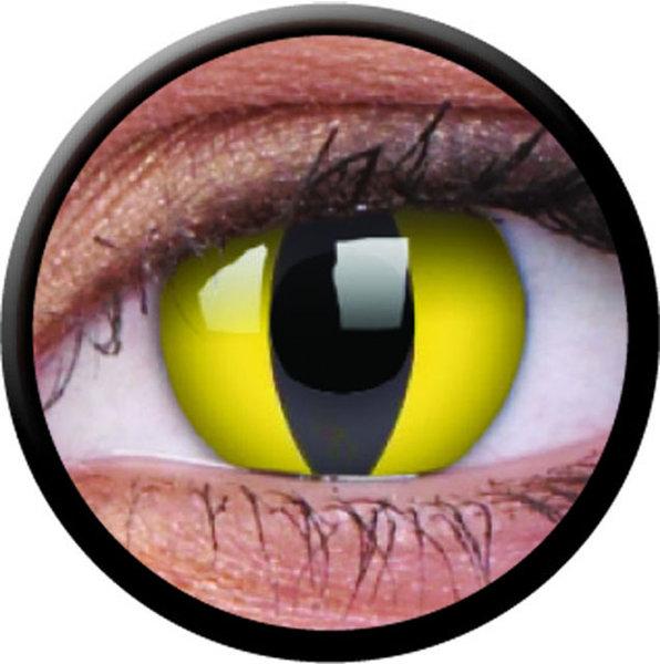 ColourVue Crazy čočky - Cat Eye (2 ks roční) - nedioptrické