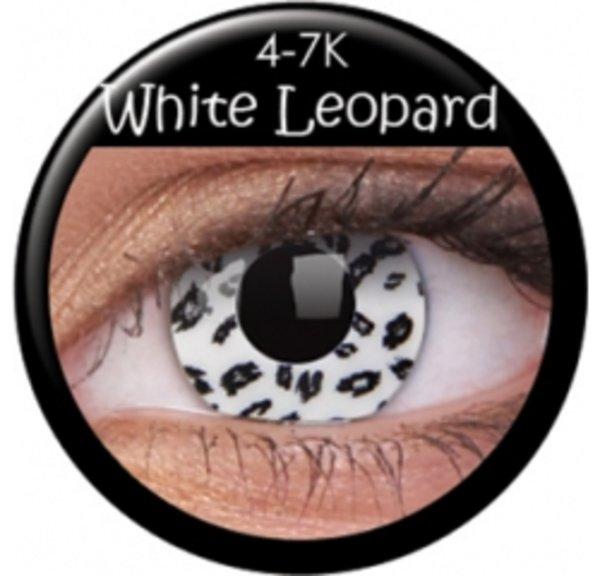 CRAZY ČOČKY (2ks, tříměsíční) - White Leopard exp. 05/2018