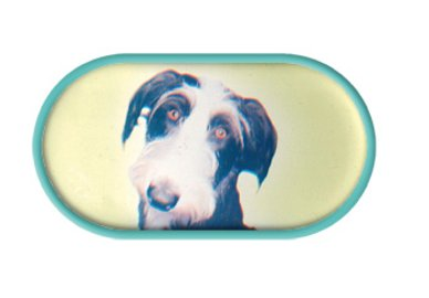 Pouzdro se zrcátkem Psi - Foxterier