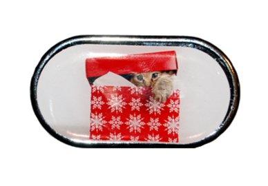 Pouzdro se zrcátkem Vánoční motiv - Kotě v krabici