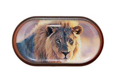 Pouzdro se zrcátkem Divoká zvířata - Lev