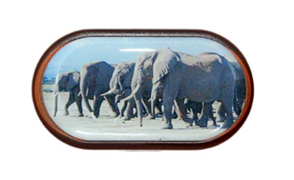 Pouzdro se zrcátkem Divoká zvířata - Slon