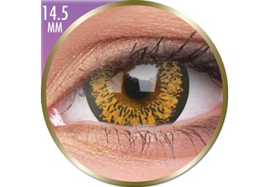 Phantasee Big Eyes - Baby Brown (2 čočky měsíční) - dioptrické - doprodej